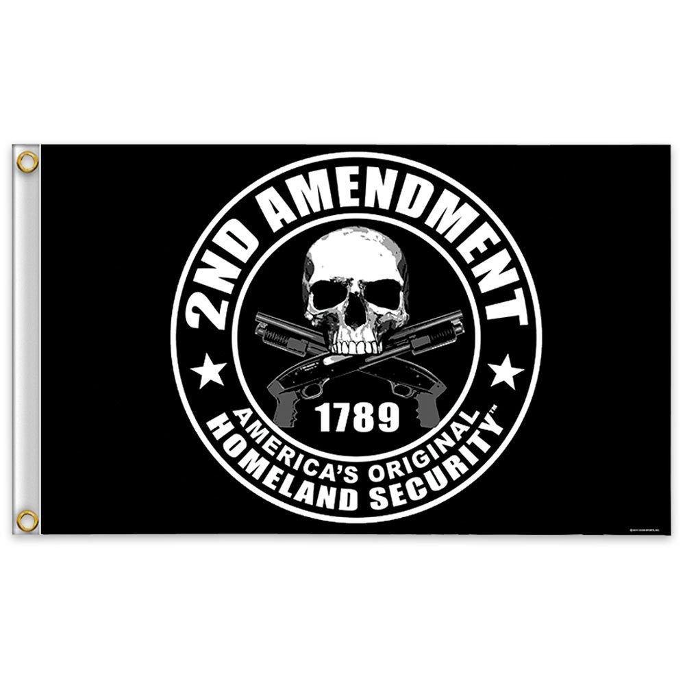 Flag 2nd Amendment